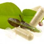 Plantas Medicinales y Aceites Esenciales