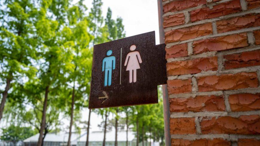 Prevención y tratamiento de diarreas estivales
